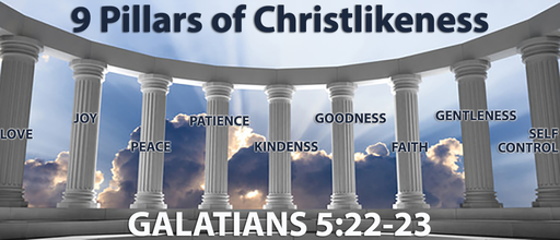 9 Pillars of Chirstliness - Patience