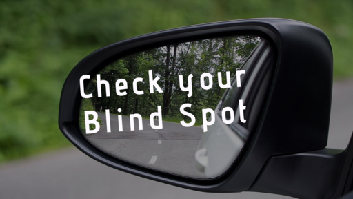 Check Your Blind Spot