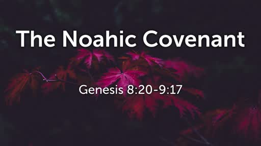 The Noahic Covenant