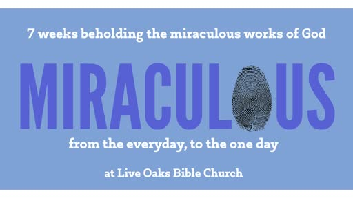 2019-09-29-LIVE OAKS - Miraculous: Provision