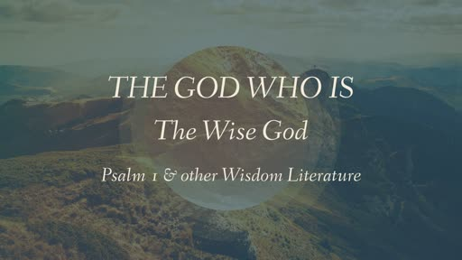 The Wise God