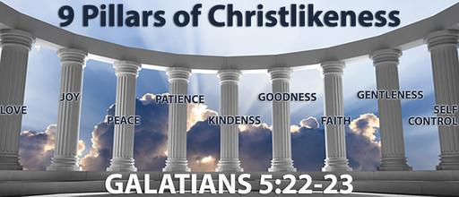 9 Pillars of Chirstliness - Kindness