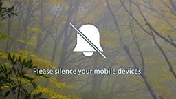 Autumn Trees phones 16x9 PowerPoint image