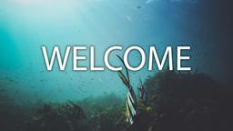 Fish welcome 16x9 PowerPoint image