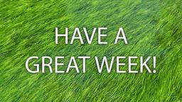 Grass in Water have a great week! 16x9 PowerPoint image