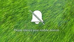Grass in Water phones 16x9 PowerPoint image