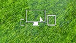Grass in Water website 16x9 PowerPoint image