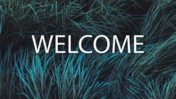 Grasses welcome 16x9 PowerPoint image