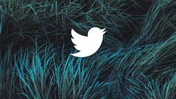 Grasses twitter 16x9 PowerPoint image