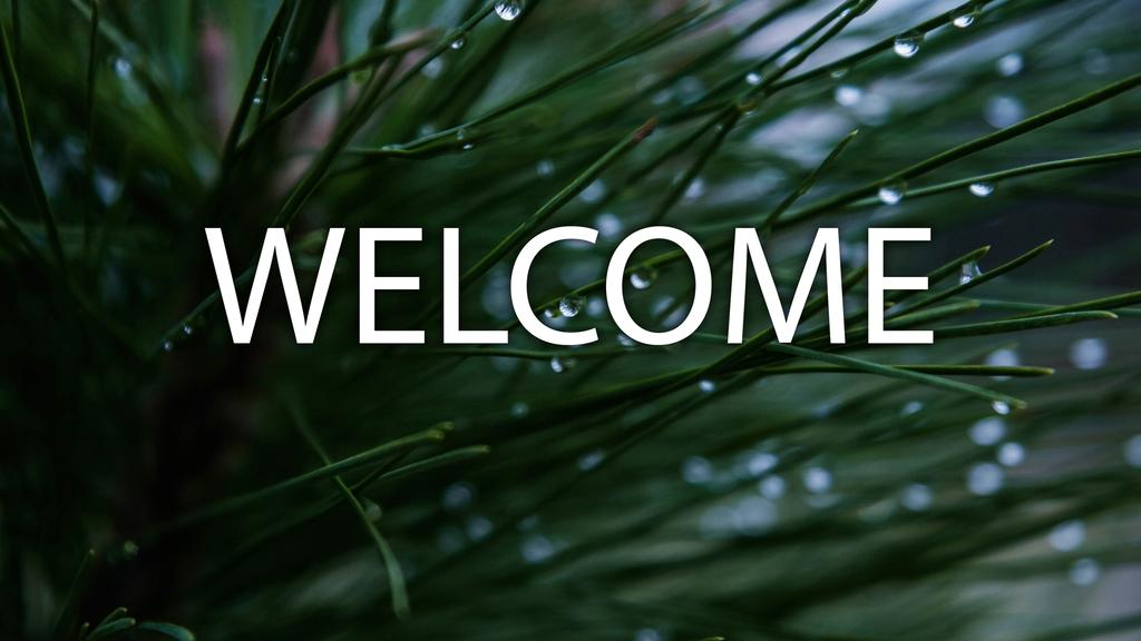 Pine Needle welcome 16x9 smart media preview