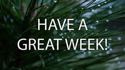 Pine Needle have a great week! 16x9 PowerPoint image