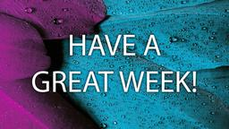 Purple Blue Plumes have a great week! 16x9 PowerPoint image