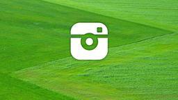Meadows instagram 16x9 PowerPoint image