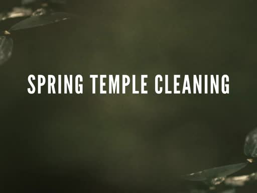 Spring Temple Cleaning