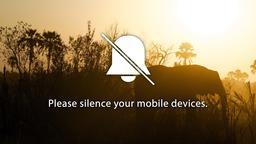 Elephant phones 16x9 PowerPoint image