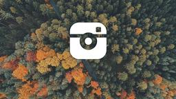 Above the Trees instagram 16x9 PowerPoint image