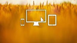 Wheat Field website 16x9 PowerPoint image