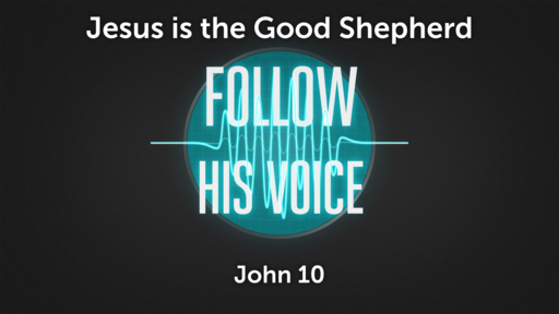 Follow His Voice