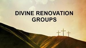 Divine Renovation Groups Smaller