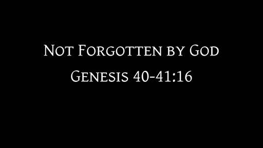 Genesis 40-41:16