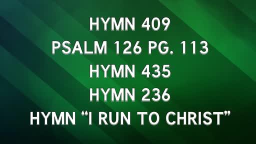Pentecost 17