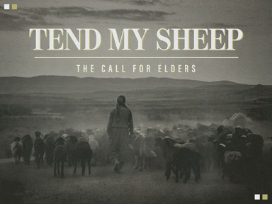 Tend My Sheep - The Call for Elders