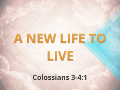 A New Life to Live