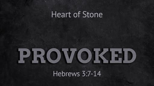 Hebrews 3:7-14 // Provoked