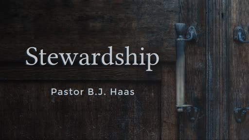 Reflections on Stewardship