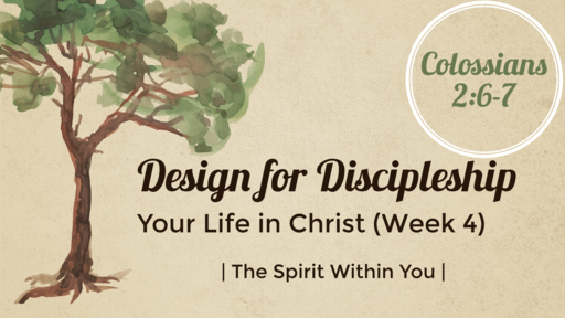 Your life in Christ (Week Four)