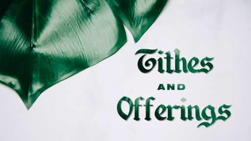 Tithes And Offering Plant