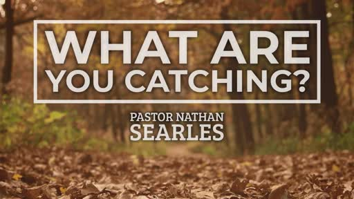 What Are You Catching?