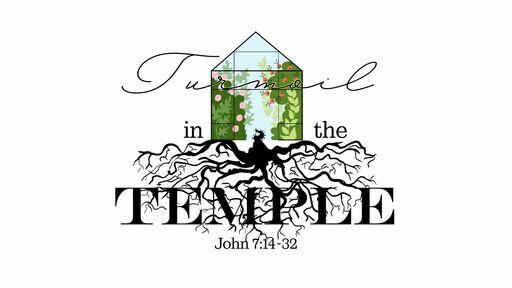 Turmoil in the Temple, Part 3