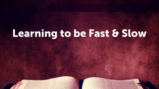 Learning to be Fast & Slow