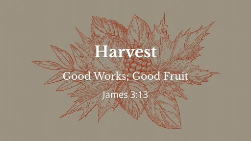 Harvest, part 1 // Good Works, Good Fruit // Pastor David Spiegel