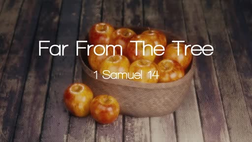 1 Samuel 14