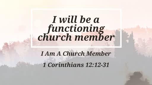 I Will be a Functioning Church Member