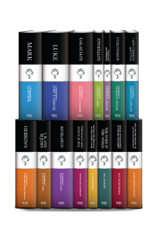 The New Testament Library Series (15 vols.)
