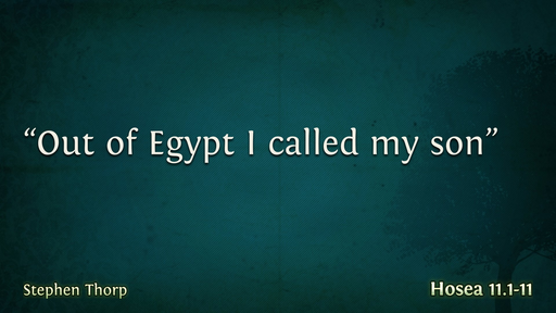 'Out of Egypt I called my Son'