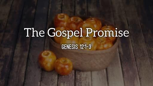 The Gospel Promise