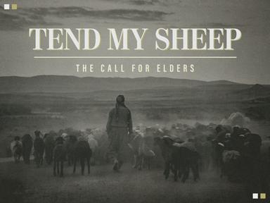 Lead the Sheep