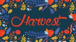 Harvest 16x9 PowerPoint Photoshop image