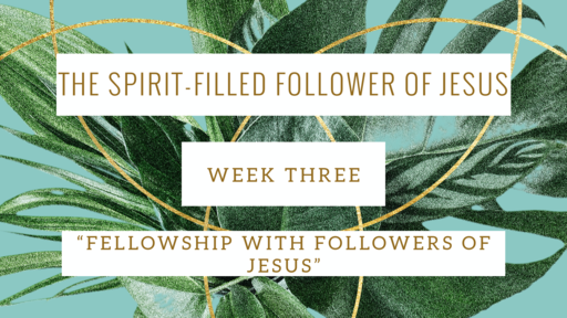 The Spirit-Filled Follower of Jesus (Week Three)