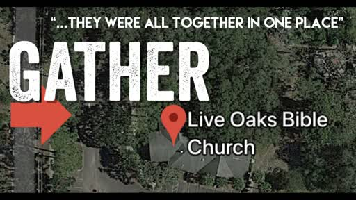 2019-11-10-LIVE OAKS - Gather: To Be Moved
