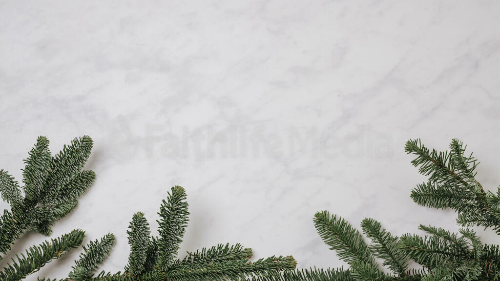 Pine Branches large preview