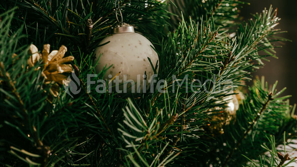 Christmas Tree Close-Up large preview