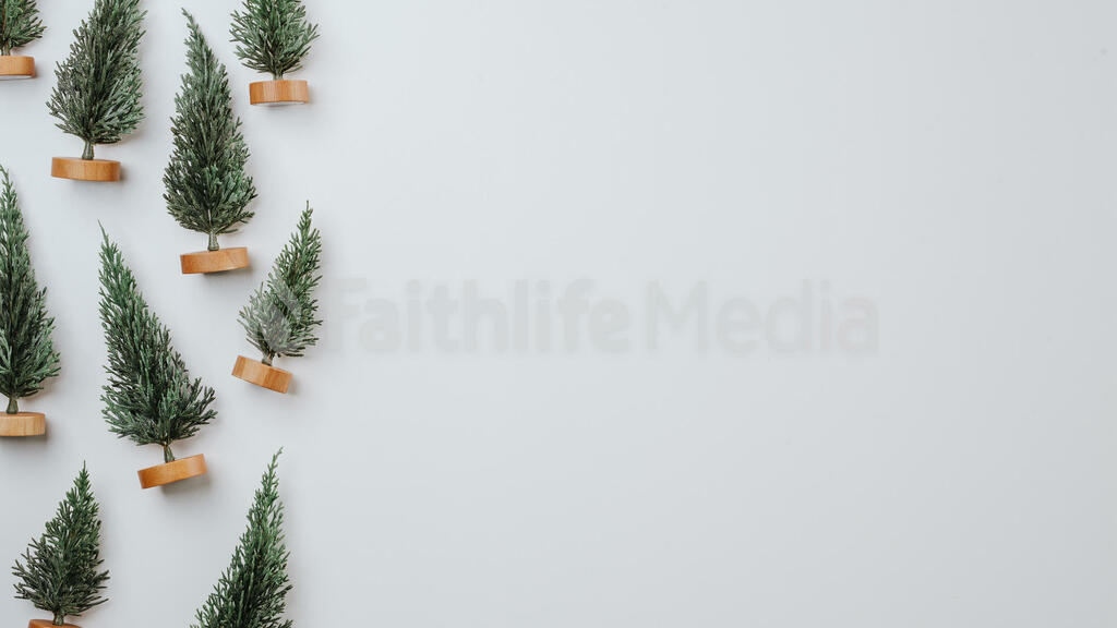 Christmas Trees large preview