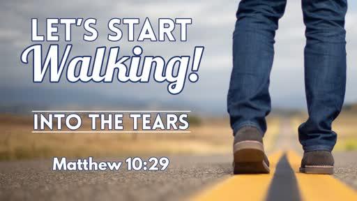 Into The Tears - November 17, 2019