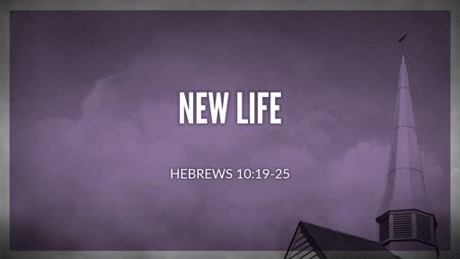 Hebrews 10:19-25 / New Life