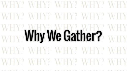 Why We Do?